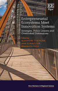 Entrepreneurial Ecosystems Meet Innovation Systems. Synergies, Policy Lessons and Overlooked Dimensions